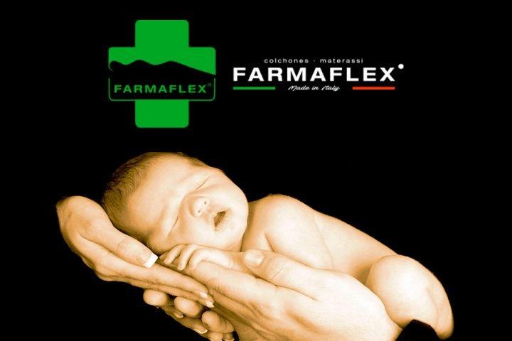 Posicionamiento página web Farmaflex