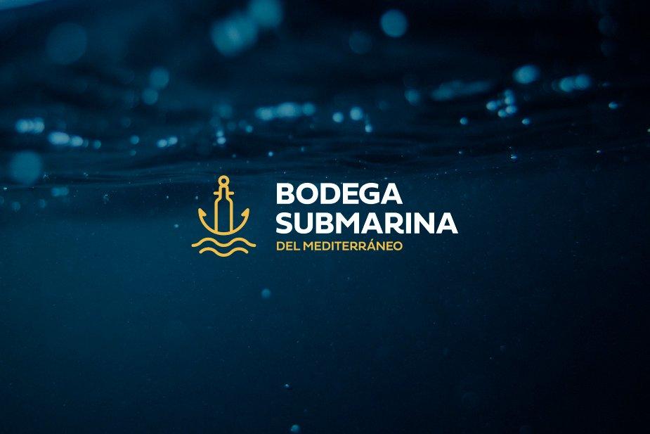 Logotipo y página web para BSM