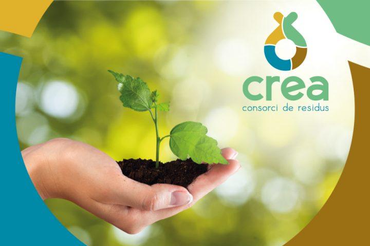Imagen de marca, logotipo y pagina web Crea